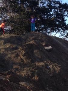 dirt pile2